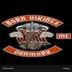 Born Vikings (1)