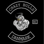 Crazy Bulls