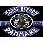 Norse Reborn