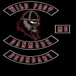 Wild Past
