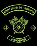 Brothers of Vikings